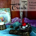 How to Create A Winter Nature Table