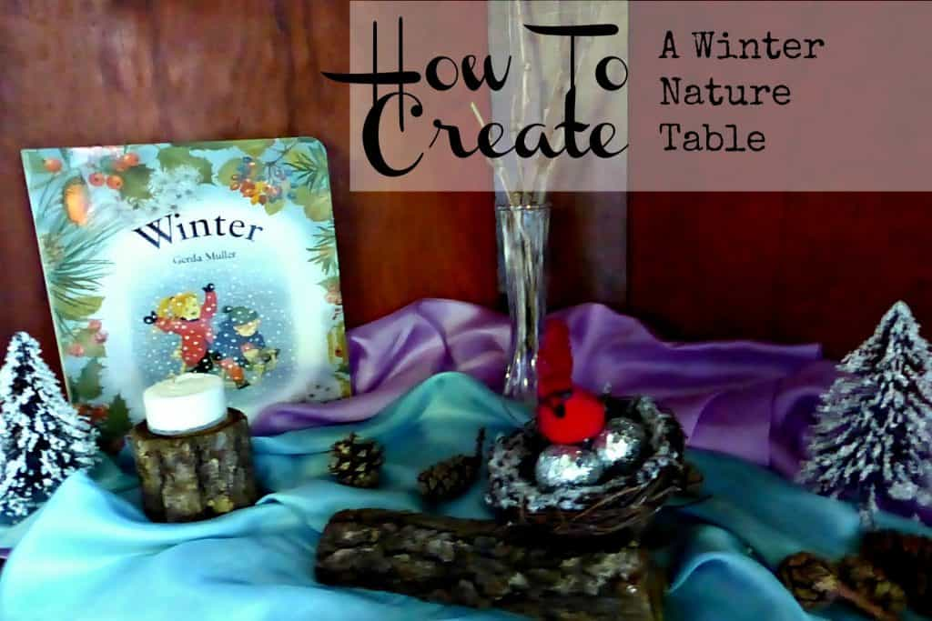 Winter nature table - Winter nature table