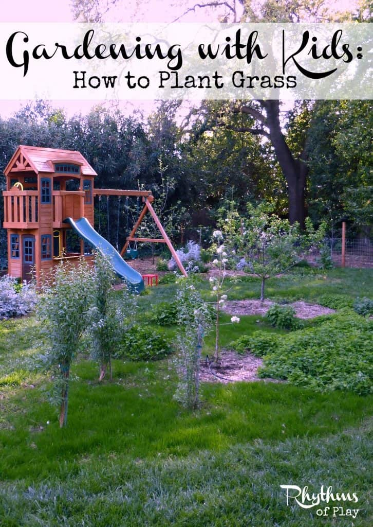 Gardening with kids how to plant grass.