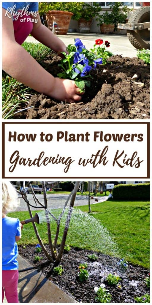 How to plant flowers organic gardening with kids rhythms of play young child planting and watering flowers mightylinksfo Choice Image