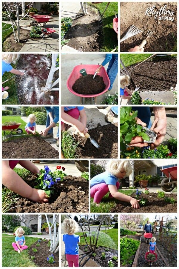 How to plant flowers step by step photo collage