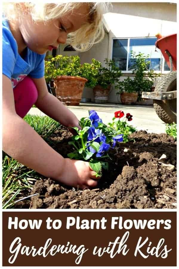 Young child planting a flower in an outdoor garden bed.
