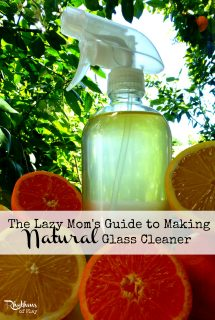 The Lazy Mom's Guide to Making Natural Glass Cleaner