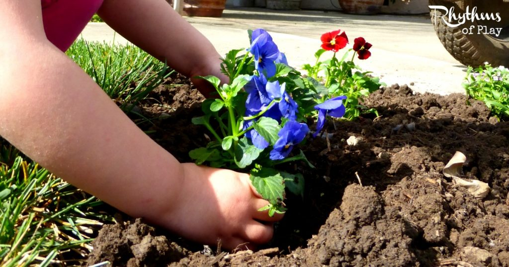How to plant flowers organic gardening with kids rhythms of play mightylinksfo Image collections