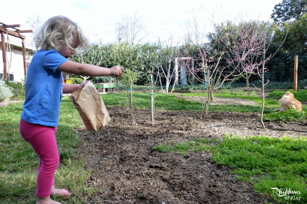 Sprinkle new grass seeds