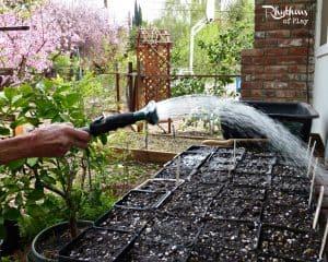 organic gardening with kids water