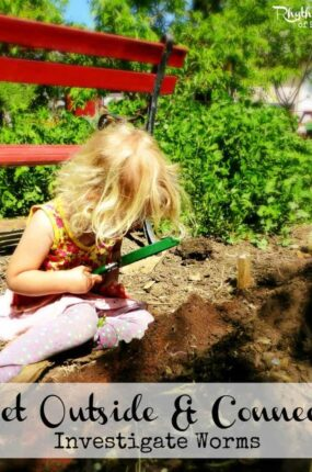 Investigate worms -- a fun learning activity for kids!