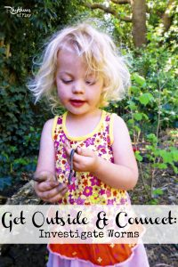 Investigate worms -- a fun activity for kids