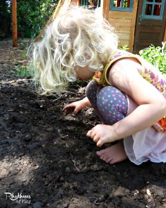 Investigate worms - A fun learning activity