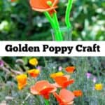 California State Golden Poppy Craft for Kids and Adults