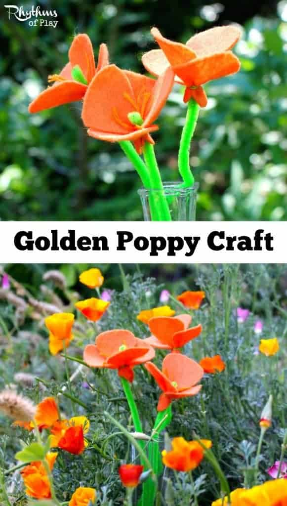 This golden poppy craft can be made in many colors for many different purposes. They would make a lovely centerpiece or gift for Mother's Day, weddings, showers, and birthday's. They would also be perfect for displaying on nature tables, and would be a great addition to a botany unit!