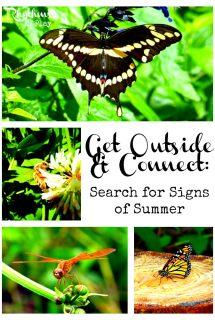Signs of Summer Scavenger Hunt