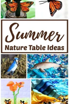 Summer nature table ideas for natural learning.
