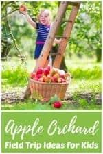 Apple Orchard Field Trip Ideas for Kids