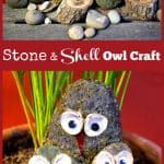 Stone and Shell Owl Craft