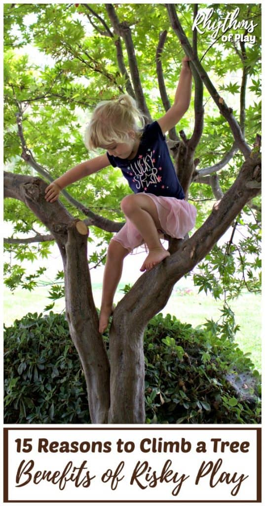 young child climbing a tree