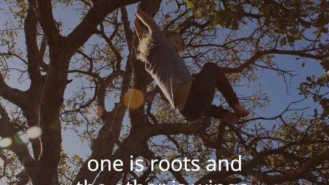 child swinging in tree with a paraphrased version of a quote by Dr. Maria Montessori