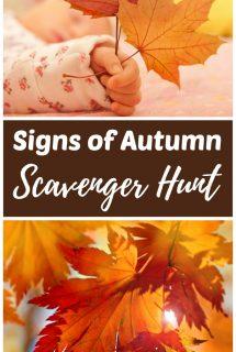 Signs of Autumn Scavenger Hunt for Kids