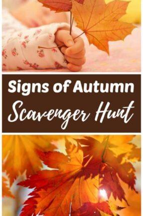Signs of fall scavenger hunt for children