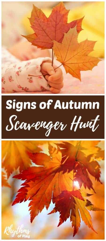 Signs of fall scavenger hunt for children
