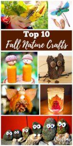 Top 10 Fall Nature Crafts
