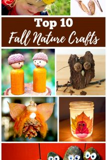 Fall Nature Crafts for Kids and Teens