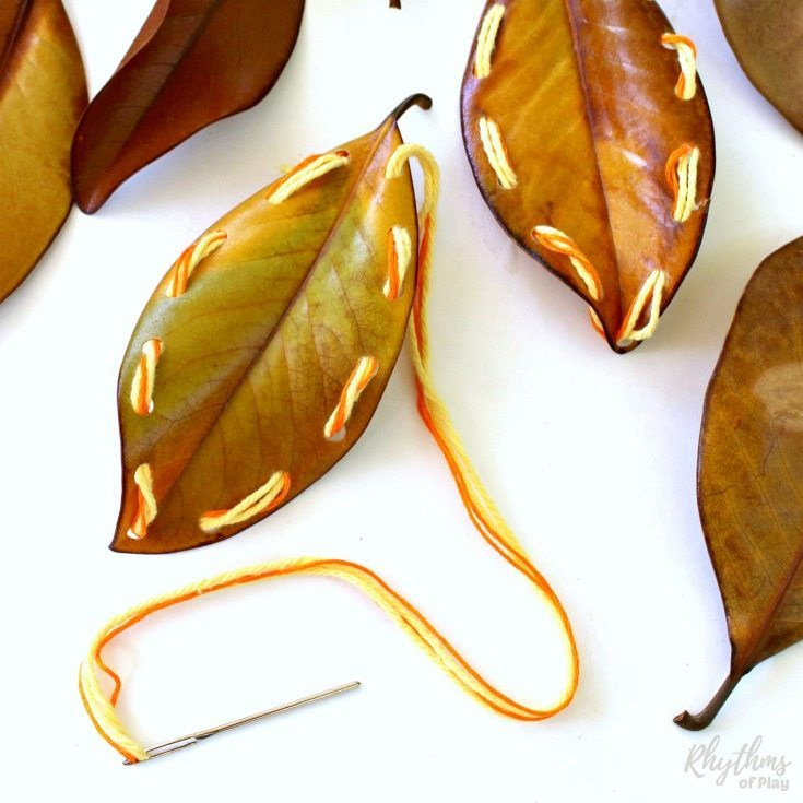 Fall leaf lacing is an easy beginning sewing project for kids. Learning to sew is a fun way to develop the fine motor muscles in the hand necessary for writing and more detailed hand work. Using sturdy fall leaves to practice sewing instead of lacing cards makes this homeschool activity idea both economical and eco-friendly.
