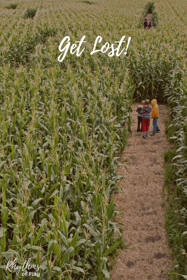 Corn maze field trip ideas for kids