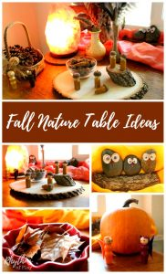 Use these fall nature table ideas to create a nature table in your home. They are used in Waldorf and Montessori education as a way for kids to study nature and the season of autumn. Having a nature table in the home is a wonderful way to invite children to engage in play based learning. Nature tables are wonderful for nature study, sensory activities, and imaginative play. They are a great addition to any playroom or homeschool room.