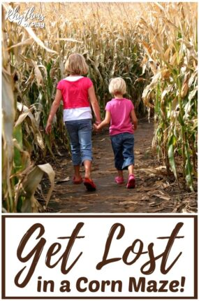 Visit a corn maze and get lost!