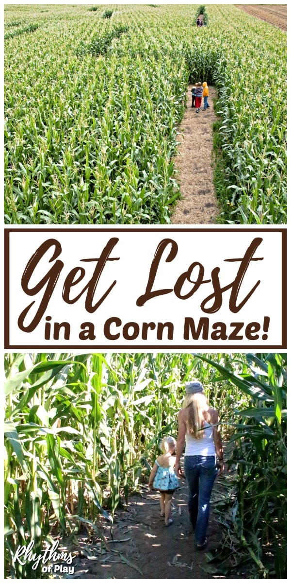 Visit a corn maze and have a corn maze race!
