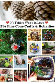 25+ Pine Cone Crafts and Activities