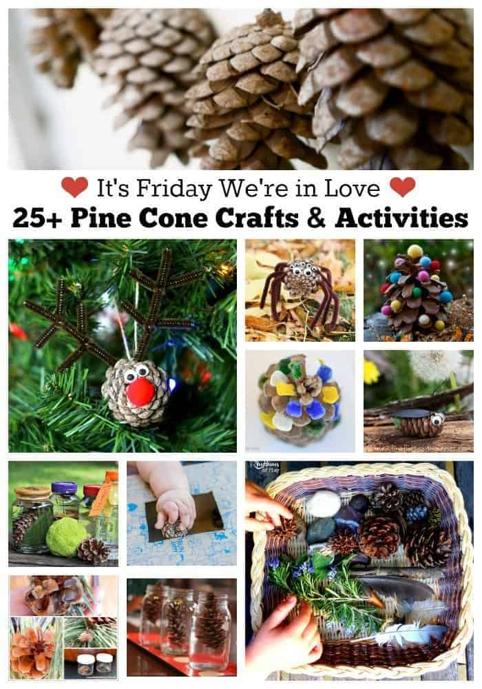 25+ Pine cone crafts & activities
