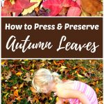 How to Press and Preserve Fall Leaves