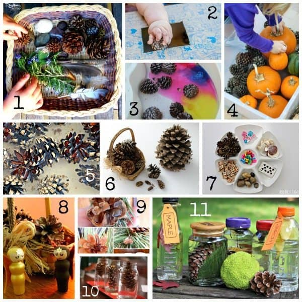 Pine cone crafts and activities