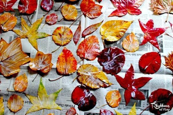 Collect Press and preserve fall leaves