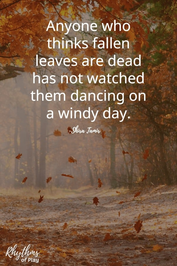 fall leaves quote meme pin