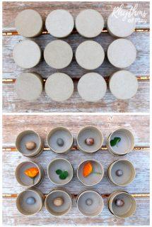 DIY Nature Memory Game