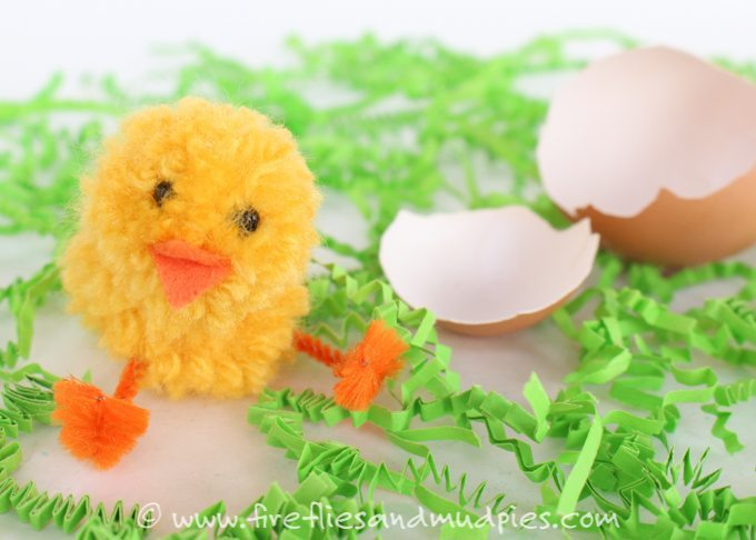 FM-Simple-Pom-Pom-Baby-Chicks-14