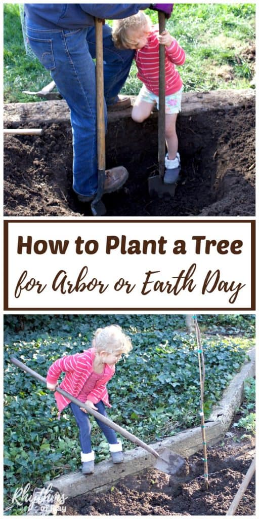 Learning how to plant a tree for Arbor Day or Earth Day is a fun and educational DIY gardening project for kids. Every year the public is encouraged to plant and care for trees on Arbor Day, but planting one for Earth Day makes just as much sense. These easy gardening tips are perfect for schools, homeschoolers, and families.