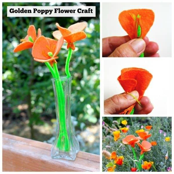 golden poppy flower craft