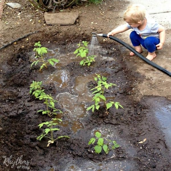 chores for kids - child watering garden and helping with the chores