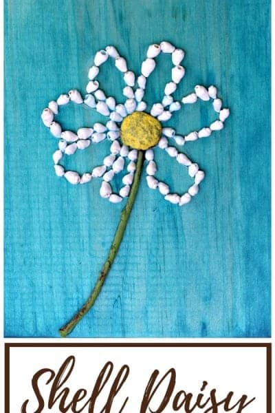 Shell daisy nature craft