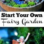 Start Your Own Fairy Garden