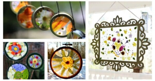 real flower suncatcher craft ideas