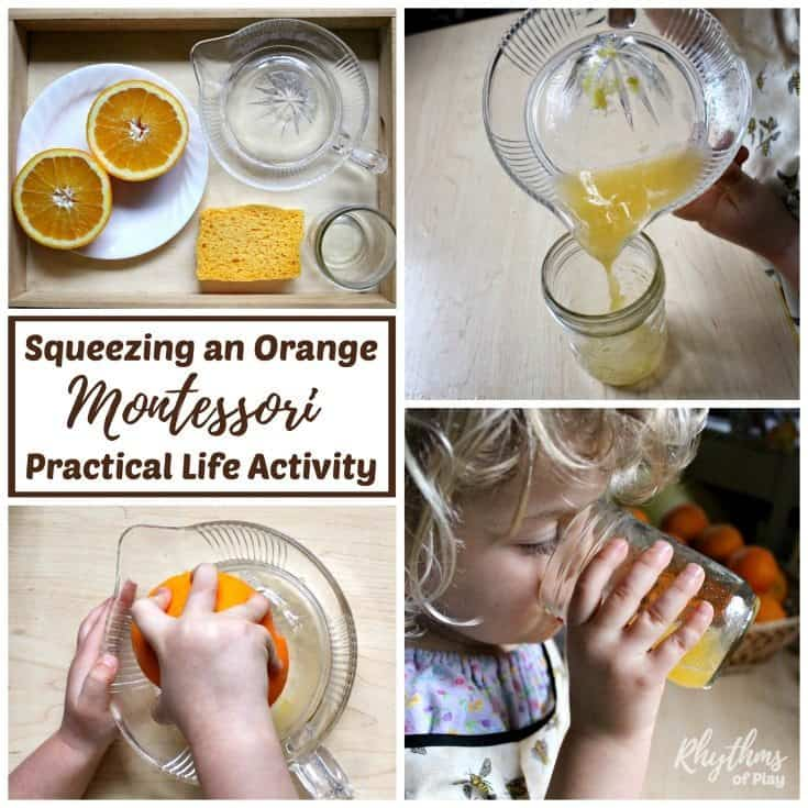 Squeezing an orange Montessori practical life activity is an easy first exercise in at home food preparation for kids. Kitchen learning activities help toddlers develop self-confidence and self-sufficiency in the kitchen, make preschoolers and kindergarteners feel like they are making a contribution at home, and help elementary aged kids develop cooking skills.