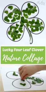 Lucky Four Leaf Clover Nature Collage