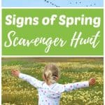 signs of spring - migrating birds and wildflowers spotted on spring scavenger hunt.