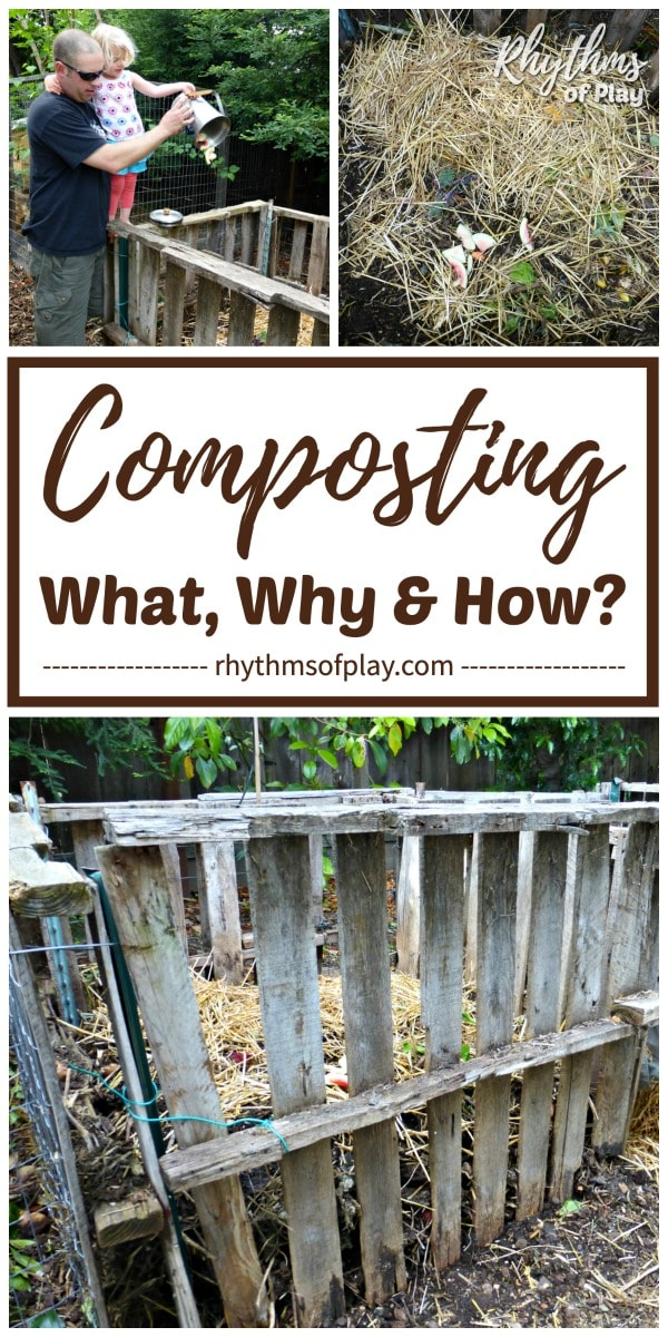 guide to backyard composting at home