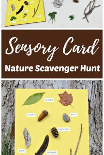 Nature Scavenger Hunt with Sensory Card